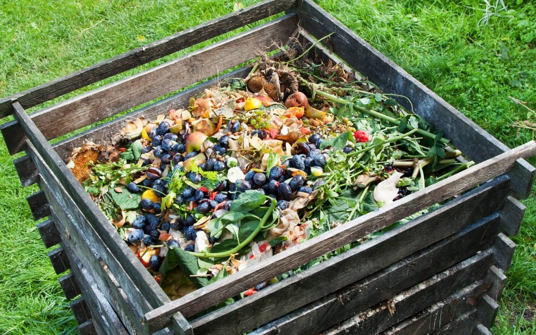 To Compost or Not to Compost in Muskoka – That's the Question