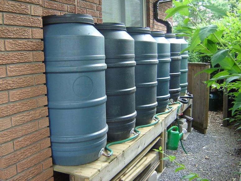 Muskoka Conserves Water with Rain Barrel Program